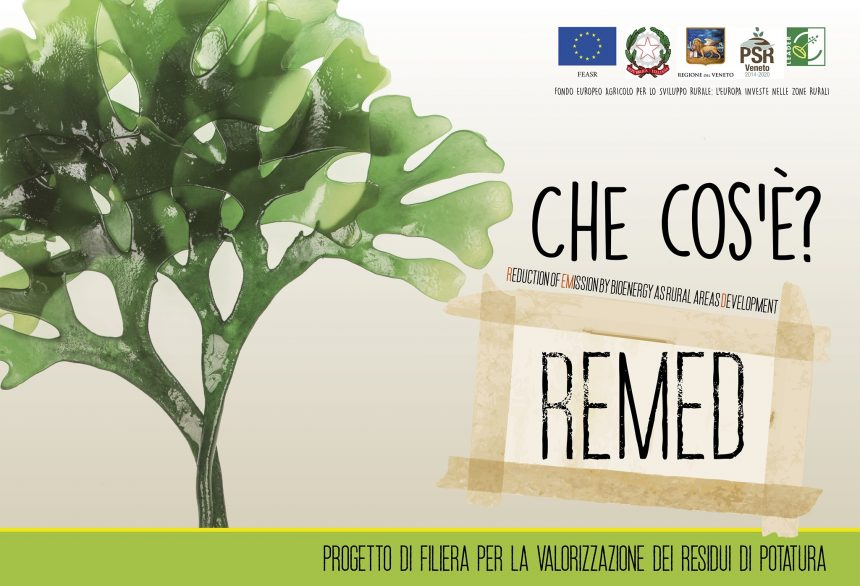 PROGETTO REMED